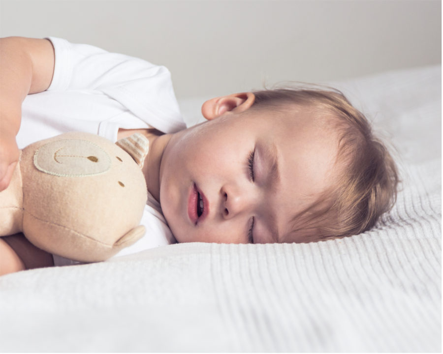 cute looking little 14 month old boy fast asleep cuddling his soft teddy
